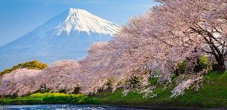 日本7日自由行